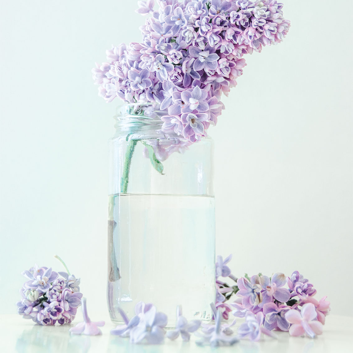 Spring lilacs in a glass jar -colour psychology